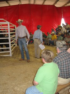 Luke Mobley and Jack Hedrick at Sunshine Farms Sale