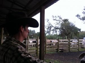 Luke Mobley @ Kempfer Cattle Company 2013