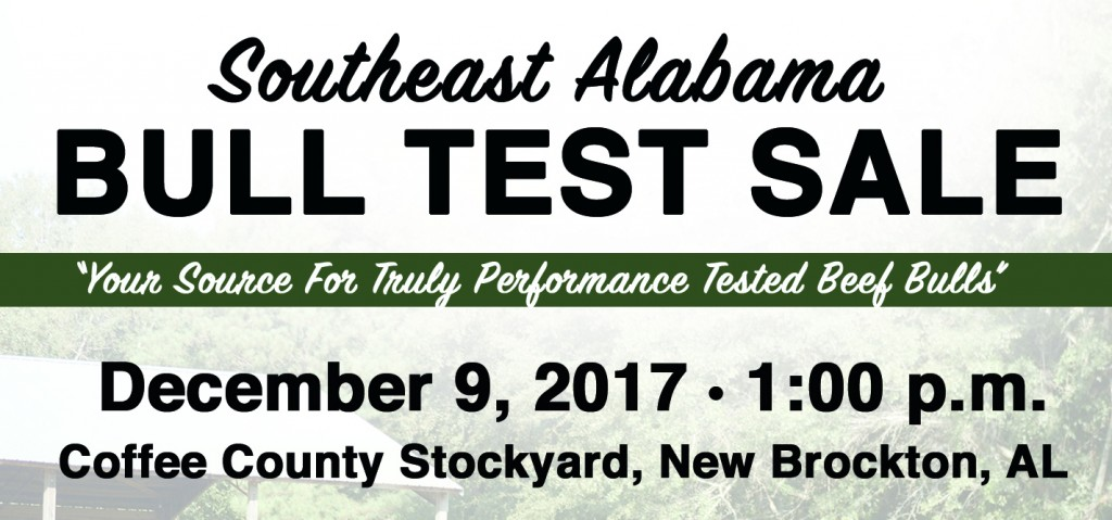 Southeast Alabama Bull Test Sale 2017 a